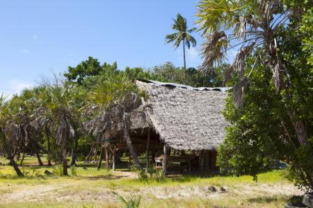 Hut on Funzi island in Kenya