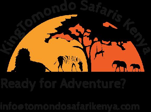 Company logo of KingTomondo Safaris Kenya