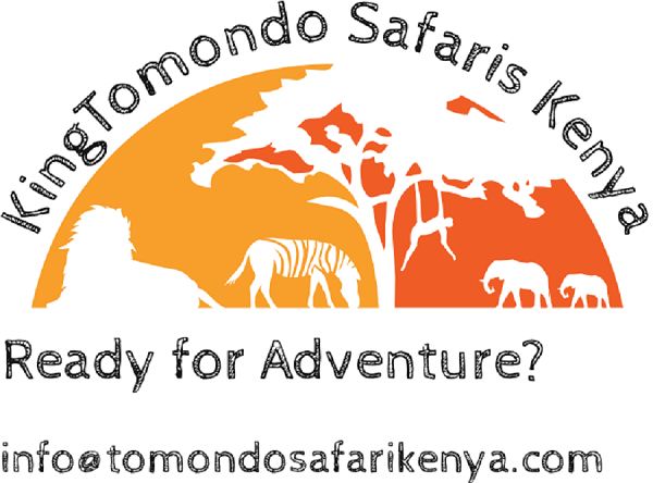 Company logo of KingTomondo Safaris Kenya