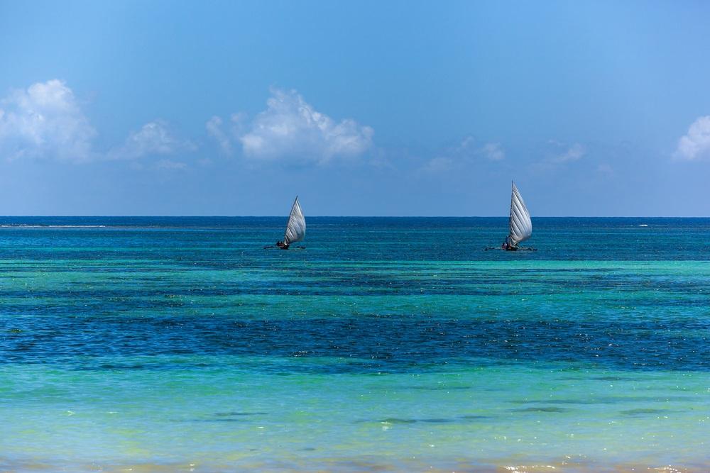 Arabic dhow safari on the Indian Ocean
