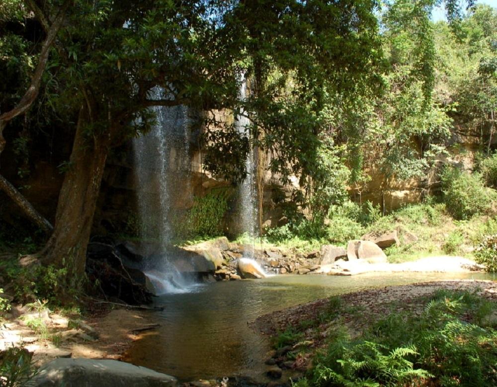 Sheldrick Falls in Shimba Hills National Park