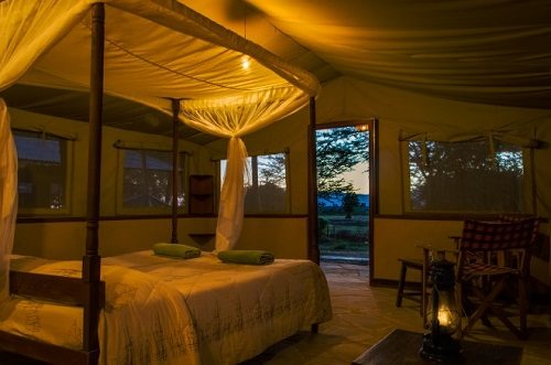 Inside view of a tent in Sentrim Tsavo Tarhi Camp