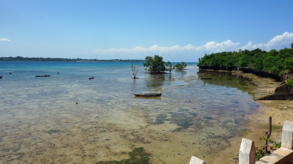 A view over the tropical Wasini Marine Park in Kenya